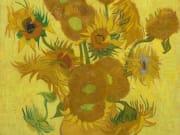 Sunflowers_vangoghmuseum-s0031V1962-800