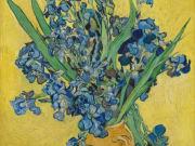 Irises_vangoghmuseum-s0050V1962-800