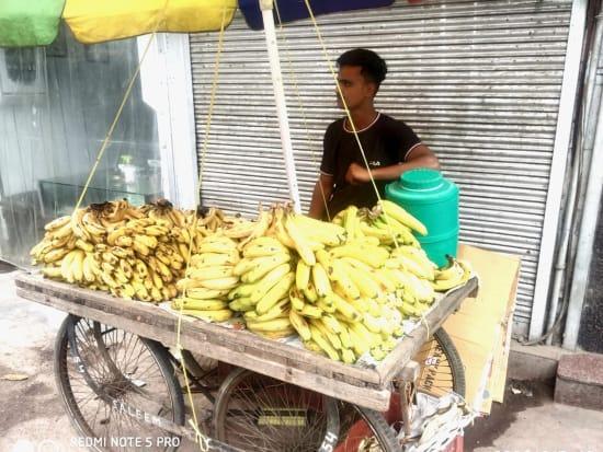 VELTRA OLD DELHI (Photo by Jasmeet)-8_