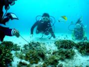 ボート体験DIV水中2