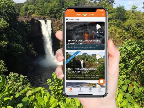 BigIsland Handphone Scenery Promo