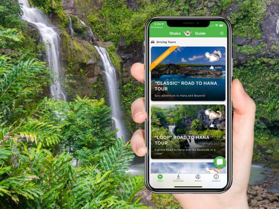 Maui Handphone Scenery Promo