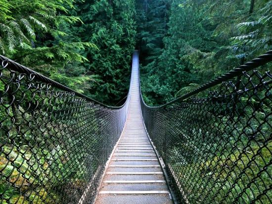 Canada_British Columbia_Vancouver_Lynn Canyon_shutterstock_15236131