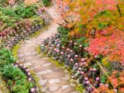 Miyajima_Daishoin Temple_shutterstock_373701256