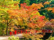 Miyajima_Momijidani Park_shutterstock_1073442509