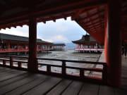 7宮島社殿