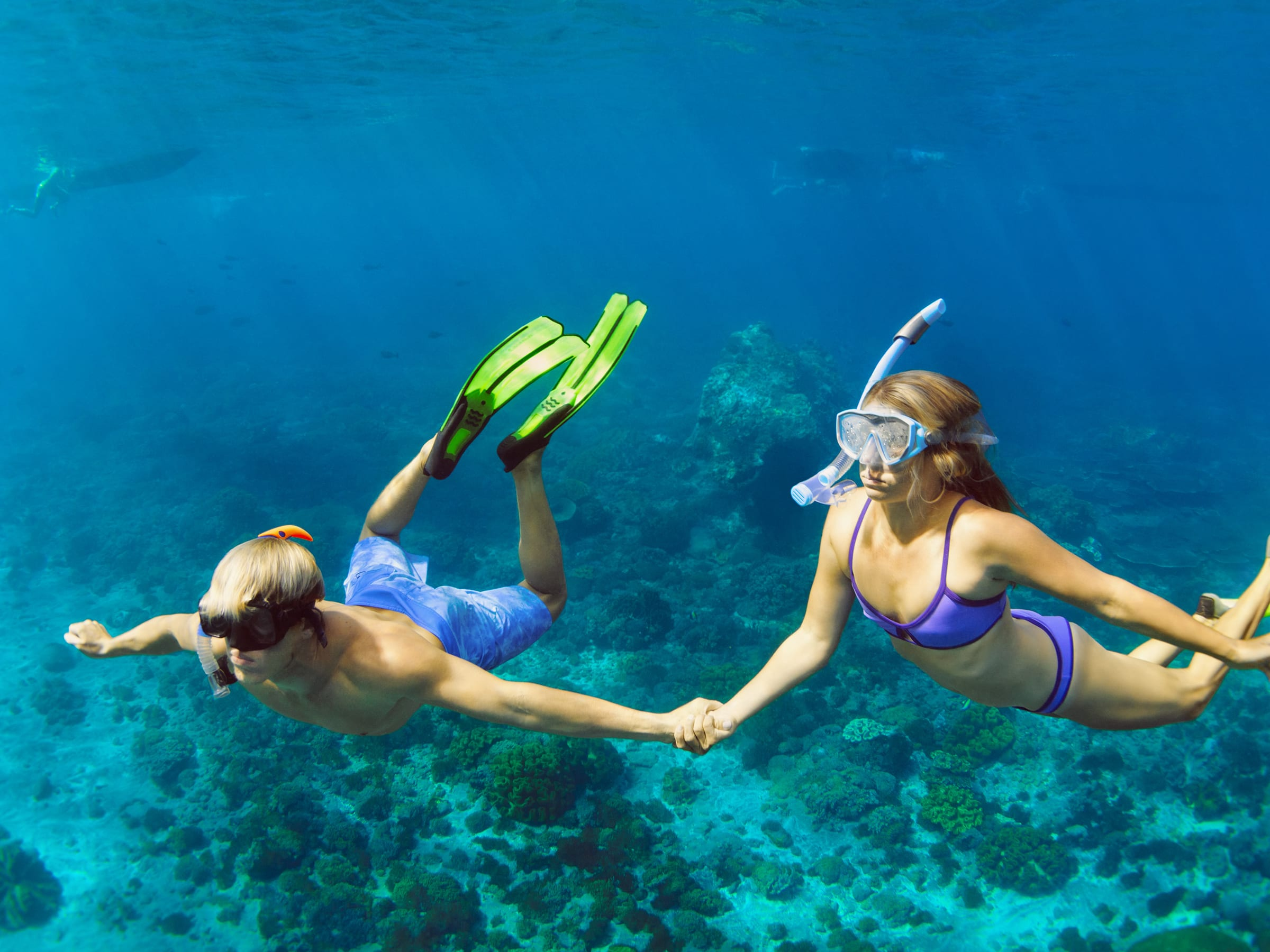 Aloha Blue Charters Turtle Town & Molokini Snorkel Cruise [Open Now] tours, activities, fun things to do in Maui(Hawaii)?VELTRA