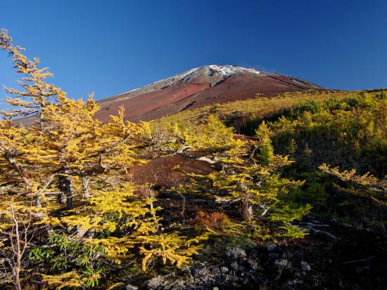 Japan_Yamanashi_Mt Fuji_Ochudo_pixta_23527497_M