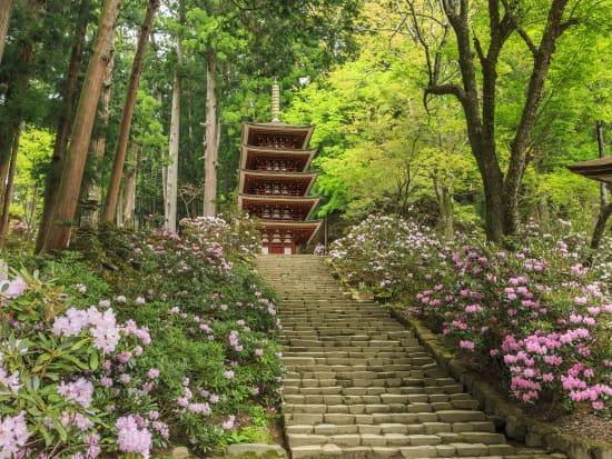 Japan_Nara_Murou-temple_PIXTA_39988892
