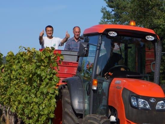 オート・コート・ド・ニュイの収穫