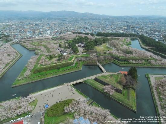 goryokaku_park02