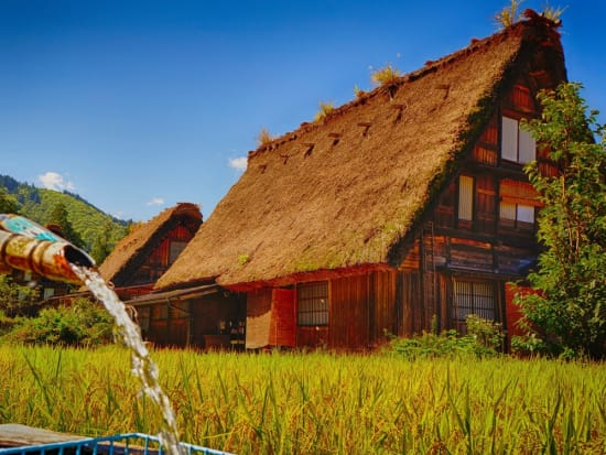 Japan_Gifu_Shirakawago_Autumn_shutterstock_615875078