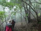 最初は、霧の中を突き進め!