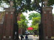Harvard Unuversity