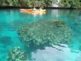 きれいで穏やかな海でのカヌーは最高!
