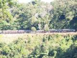 バロンフォールス駅で降りた際、向こう側の山にちょうどキュランダ鉄道が停まりました