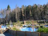 自然に囲まれたテカポ温泉