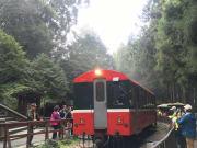 一区間だけでしたが、森林鉄道も乗れて良かったです。全線開通が待ち遠しいです!