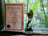 ワールドラグジュアリースパアワーズ2013スパ賞受賞