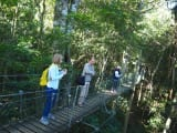 ユラユラ揺れる吊り橋も楽しい!