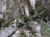 鍾乳石から落ちる水を受ける(斎場御嶽)