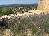 シャトー・ヌフ・デュ・パプの城跡からの風景(予定外ですがワイナリーへ行く途中で立ち寄ってくれました)