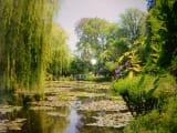 〝モネの池〟
