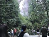 バンクーバーで1番の滝も見れて最高でした。