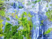 キュランダ(美しいストーニークリーク滝)