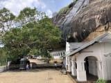 ダンブッラ寺院