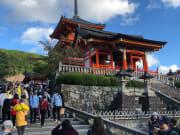 清水寺は、駐車場の確保、細い道を考えると絶対ツアーがお薦めです。