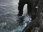 sea orch
