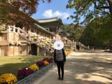 いちばん訪れたかった仏国寺で