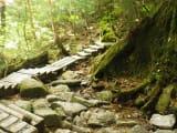 長かった階段