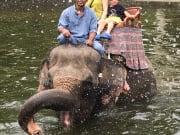 写真撮る時は象がシャワー