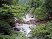 蔓橋(祖谷のかずら橋)