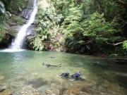 滝壺でシュノーケル。お魚とエビをゲット!