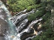 導遊說夏天適合看青池,冬天則更適合來看白鬚瀑布,所以無論夏天或冬天都很推薦來報名一日遊行程喔!