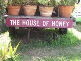 ハチミツワインのお店で