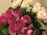 ホテルのお部屋に朝市で買った『バラ』を飾りました。