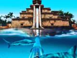 水槽の中を通り抜けるウォータースライダー