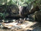 森の中のハイキング、自然に癒されます!