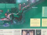 マノアのトレッキングコースの図