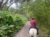 先頭をゆっくり歩いてくれるので、ついていって渓谷を乗馬します。