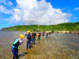 ツアー全員一列に並んでの海の散歩!